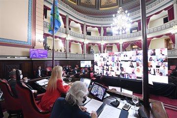 El Senado ratificó decretos del Ejecutivo y declaró Emergencias en geriátricos y de género