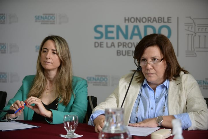 Sesionaron distintas comisiones en el ámbito del Senado Bonaerense